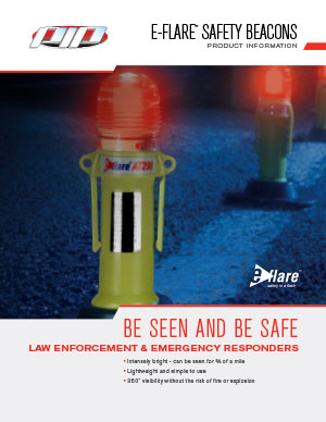 Safety in a Flash Brochure